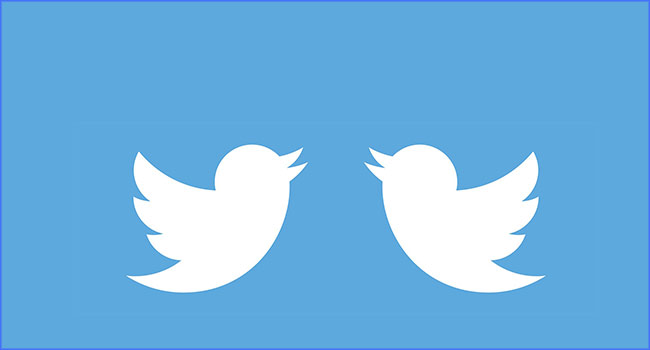 How To Change Your Twitter Display Name