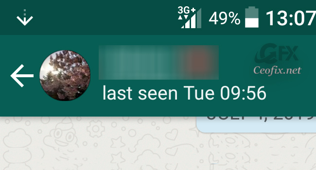 How to Hide WhatsApp Last Seen or Online Status Timestamp
