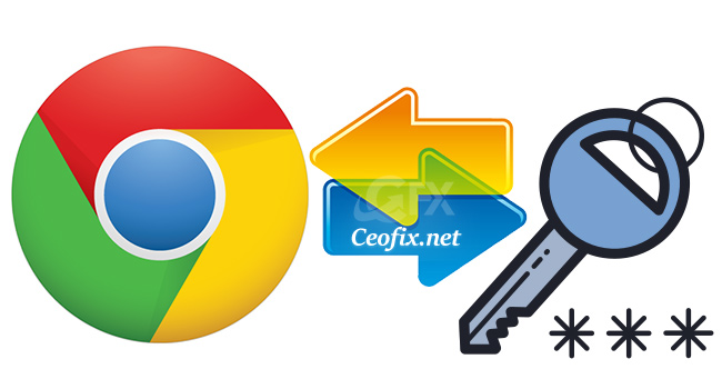 How to Import and Export Passwords in Google Chrome?