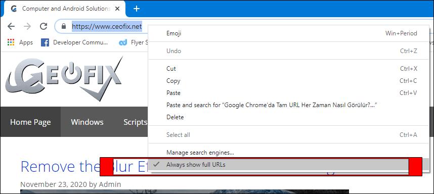 always show full URLs in Google Chrome's address bar