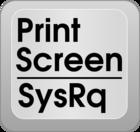 Print Screen (PrtScr) key
